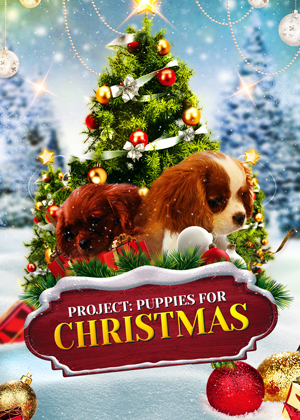 Puppies for Christmas